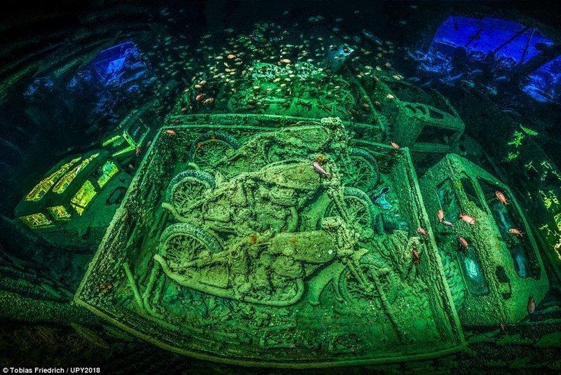 Победитель - снимок потопленного в Красном море британского сухогруза времен Второй мировой войны. Фотограф - Тобиас Фридрих. конкурс, красиво, лучшее, подборка, подводные снимки, подводные фото, фото, фотографы