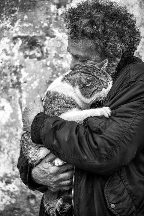 Проект «Мужчины и их кошки» …