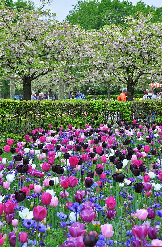 Весна здесь пахнет совершнно по-особому