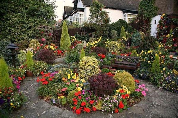 Во что посадить рассаду цветов