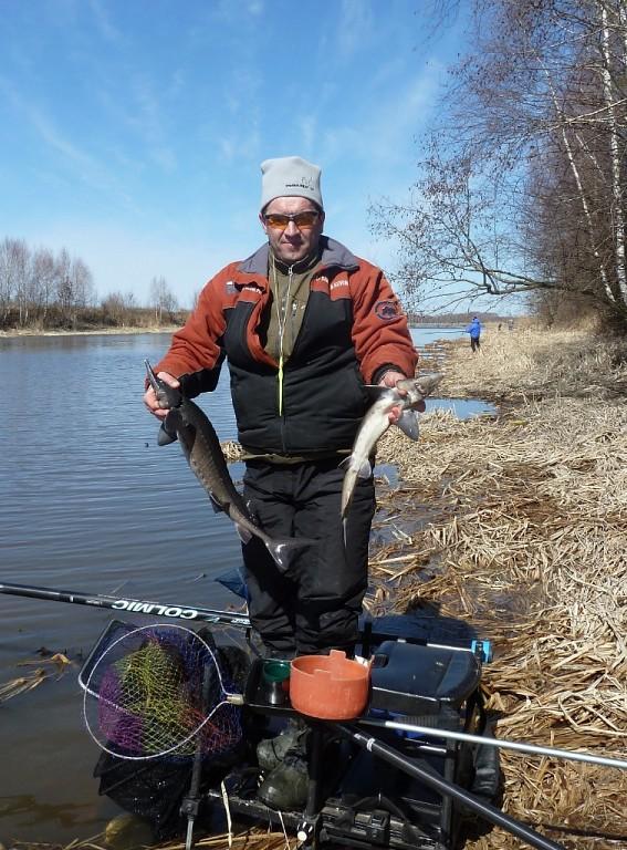 отчеты о рыбалке в волгореченске
