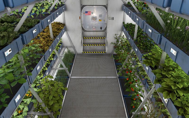 гАстро-тур: какой будет космическая еда будущего