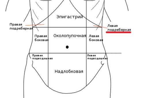 tolstuyu-ebut-v-zad