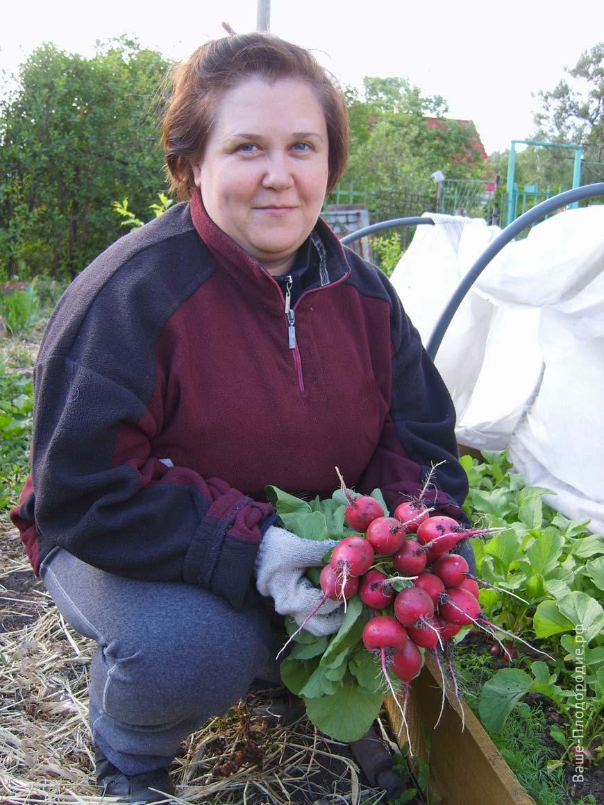 Законы плодородия в нашем саду: личный опыт