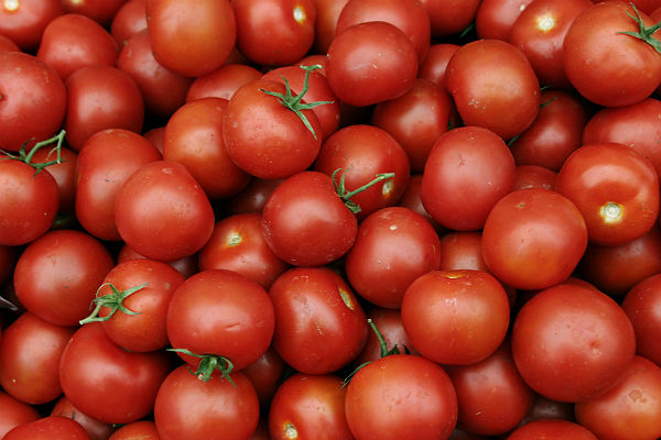Турецкие помидоры вернутся в Россию 1 декабря