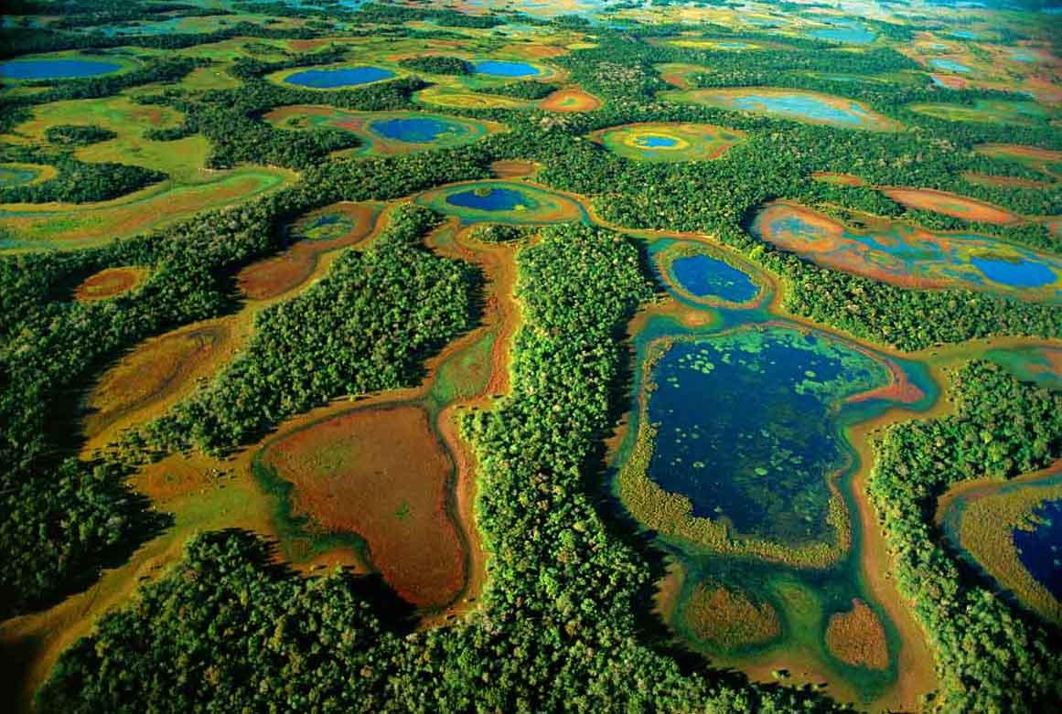 Пантанал – гигантское болото