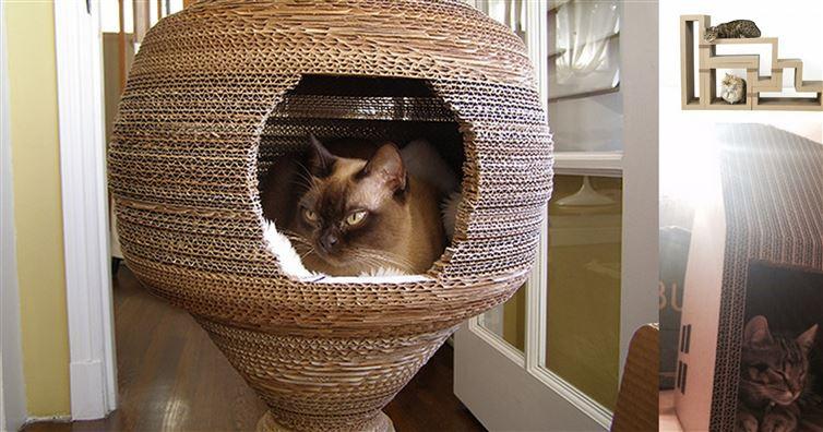12 лучших самодельных штук из картона для ваших любимых котиков