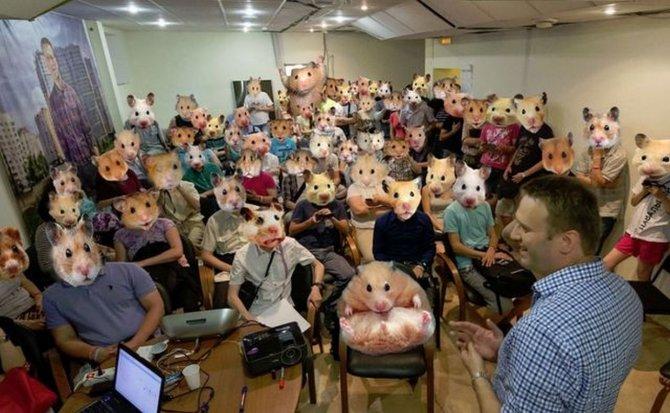 Александр Роджерс: Пара сочувственных слов для «барашков» Навального
