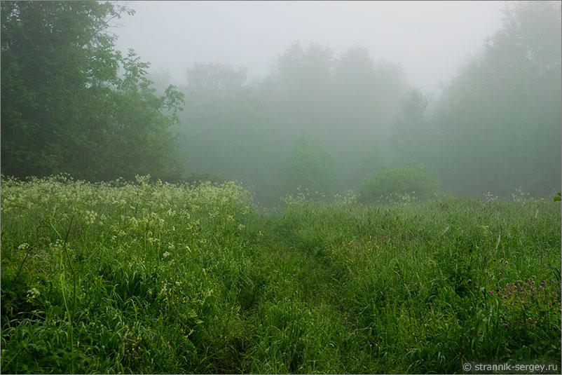 Русская природа - рассвет
