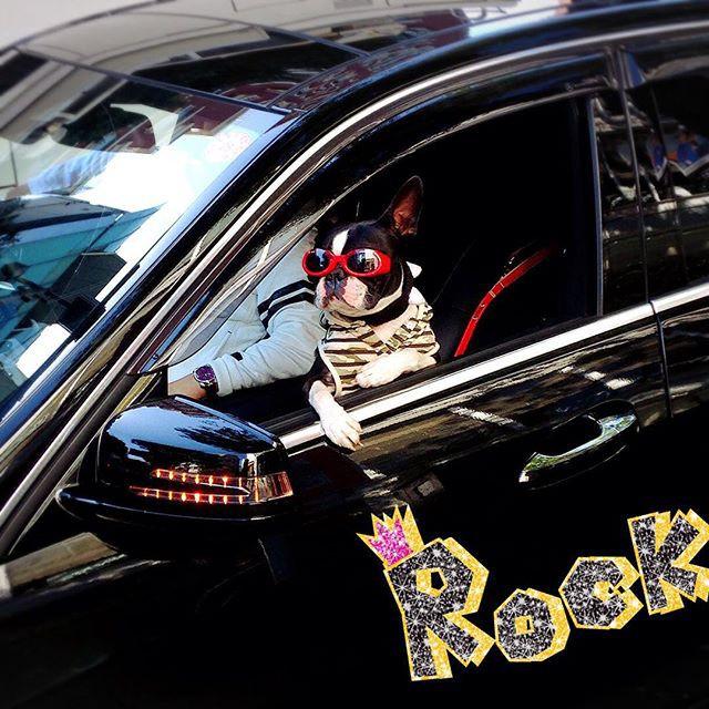 Японцы решили начать праздновать Хеллоуин сильно заранее в мире, люди, прикол, япония