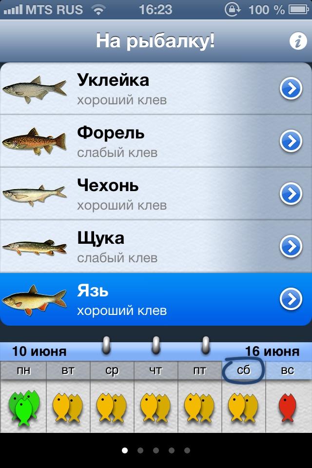 прогноз рыбалки на завтра в курске