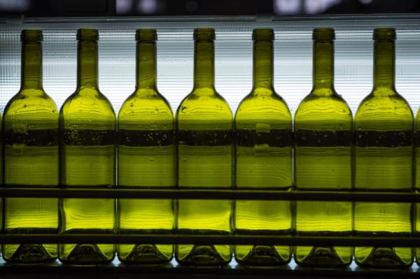 Алкоголь в России сделают одинаковым на вид