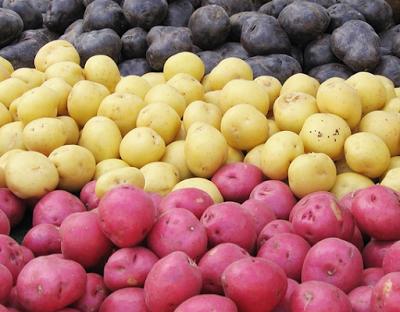 4 главных правила хранения картофеля в квартире. Забудь о гниющих клубнях!
