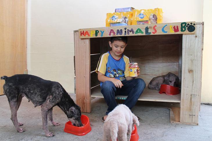 9-летний мальчик создал убежище для животных в своем гараже