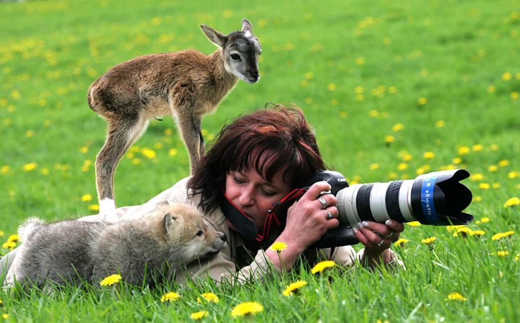 Забавные фотографии животных, которые любят фотографироваться и сами не прочь пофотографировать других