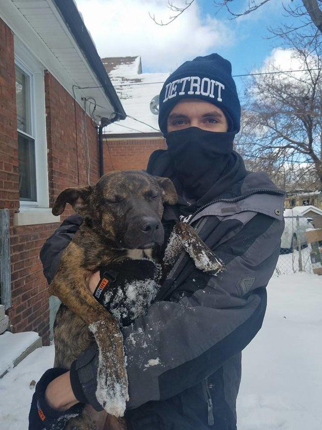 Они выгнали собаку на мороз, чтобы она умерла…