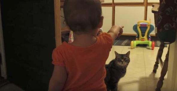 ВИДЕО: Малыш разговаривает с кошкой на неизвестном языке