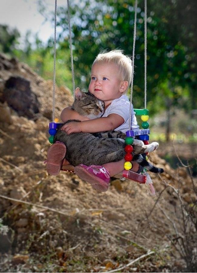 Пост, доказывающий что у кошек золотые сердца