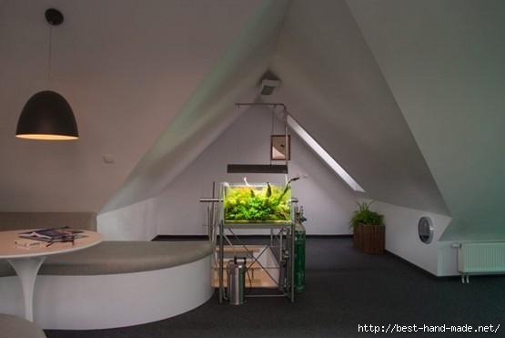 lounge-area-minimalist-apartment-AJOT-Design-Studio-555x371 (555x371, 68Kb)