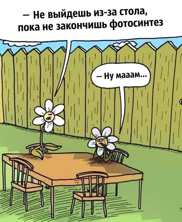 Анекдот Про Стол