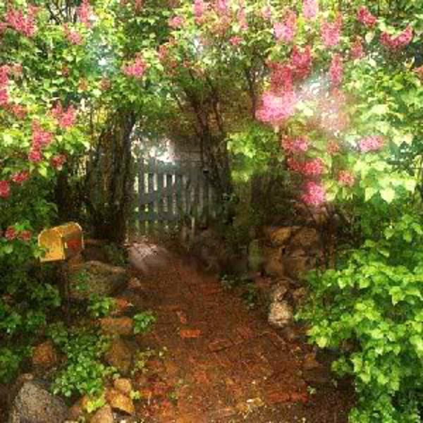 Горячее украшение сада металла крана надувательства 2012 для сбывания - Gardening изготовление от фарфора (92594878)