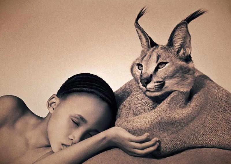 Животные и человек глазами одного фотографа