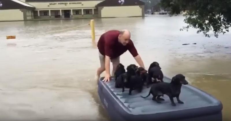 В город пришло наводнение. В…