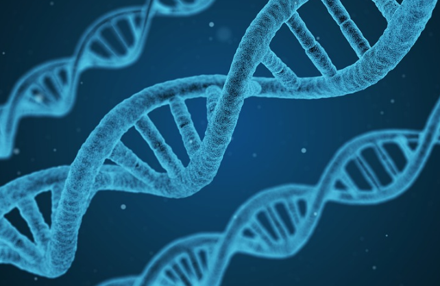 Российские ученые наделили эмбрионы иммунитетом к ВИЧ