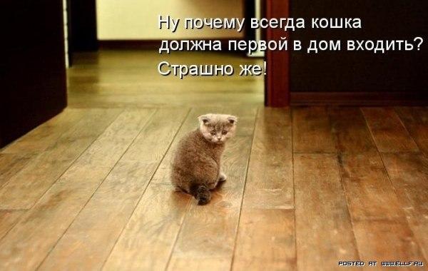 Об Ивановых