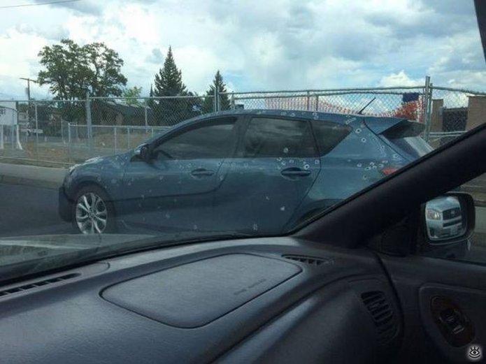 Автоказусы и автовесёлости 4