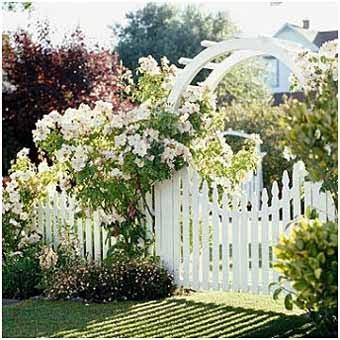 белая садовая калитка