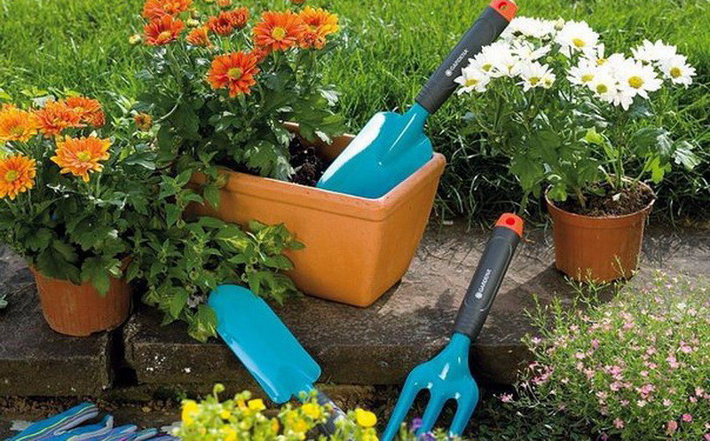 7. Почва для растений без грибка Аспирин, быт