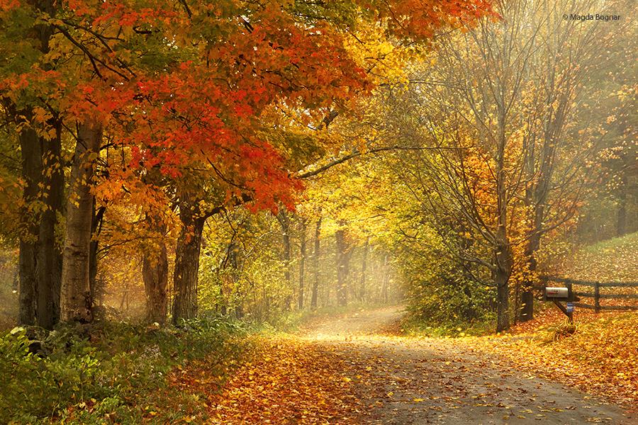 Красивая природа и пейзажи Magda Bognar