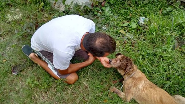 Когда этот мужчина увидел умирающего щенка, он поступил как настоящий герой!