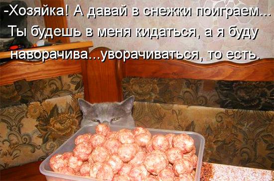 Кулинарная котоматрица-3