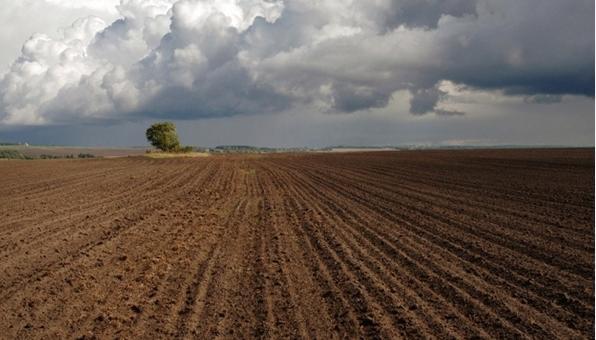 Гектар — в подарок: Россиянам будут раздавать землю на Дальнем Востоке