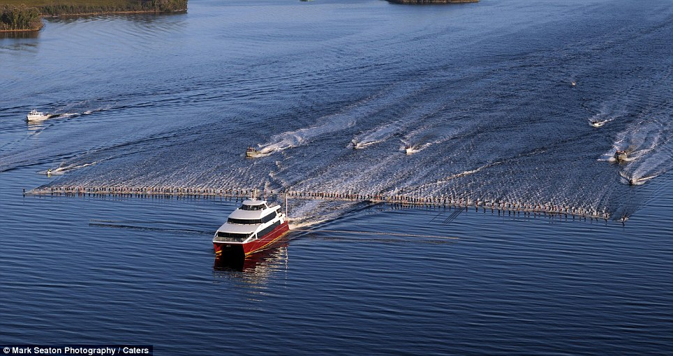229 Новый мировой рекорд   один катер, 145 воднолыжников