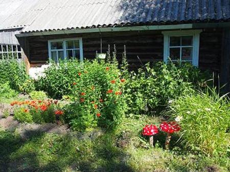 Отдых в Карелии: рыбалка, баня, овощи и ягоды с огорода