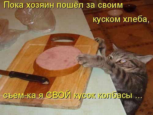 Сковорода под следствием