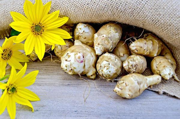 Топинамбур интереснее картофеля