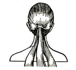 Прическа для девочки. Коса из жгутов