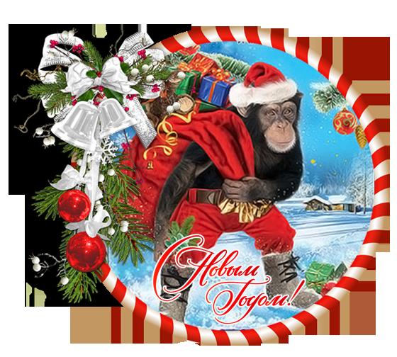 год обезьянки 3 (560x504, 462Kb)