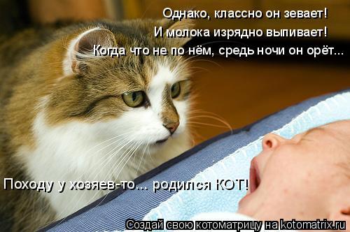 Котоматрица: Однако, классно он зевает! Походу у хозяев-то... родился КОТ! И молока изрядно выпивает! Когда что не по нём, средь ночи он орёт...