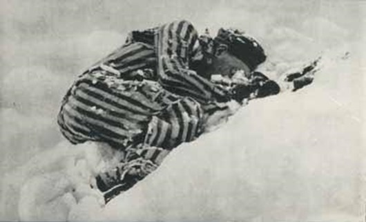 «Смертники» концлагеря Маутхаузен