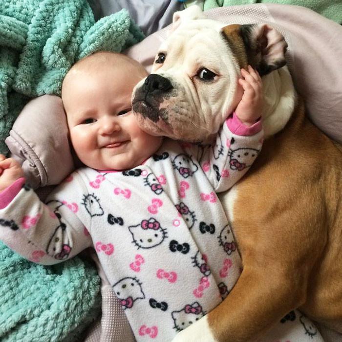 Два очарования  дружба, ребенок, собака