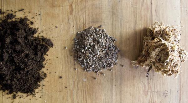 материалы для изготовления кокедамы