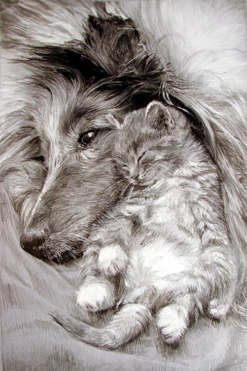 рисунки карандашом Maria Zeldis -2-10