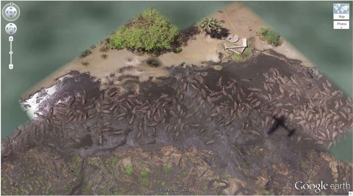 15 сюрпризов, которые зафиксировал спутник Google Earth
