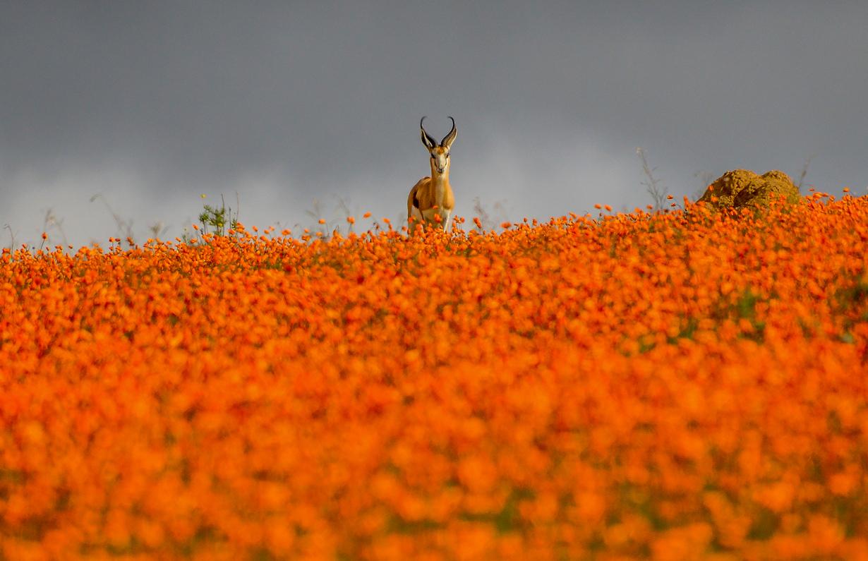 10 удивительно красочных мест планеты