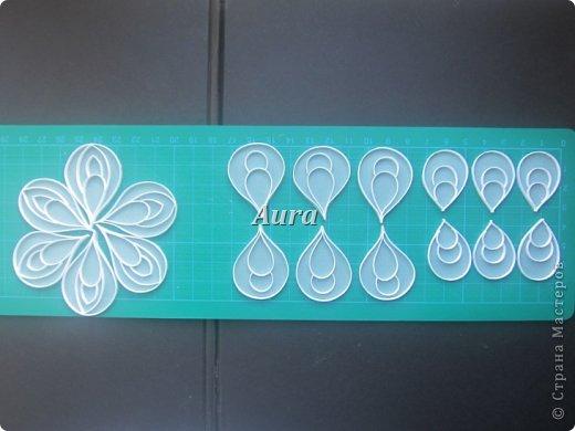Мастер-класс Квиллинг Квиллинг на кальке MK анемоны Бумага Бумажные полосы фото 4